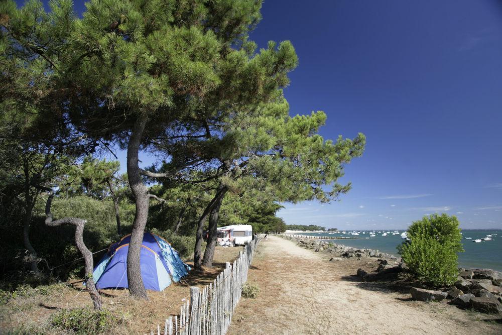 cool camping der etwas andere camping guide allesinklein. Black Bedroom Furniture Sets. Home Design Ideas